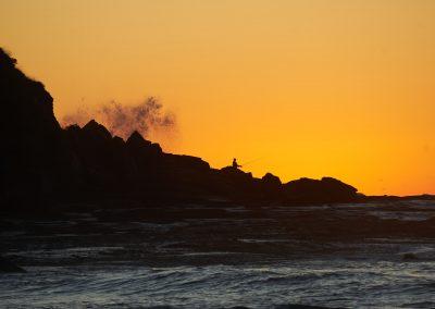 Whale Beach Fisherman Wave